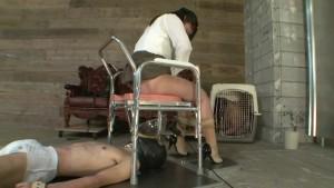 家畜便器募集中 春の嬢王育成講座 第2課程 豚車運搬餌付け