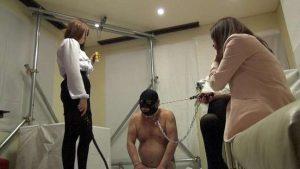 家畜便器募集中 春の嬢王育成講座 第1課程 初豚監禁餌付け YMVD-06