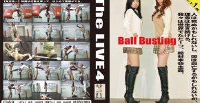 The LIVE 4 CLUB-Q TL-004
