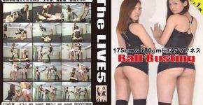 The LIVE 5 CLUB-Q TL-005