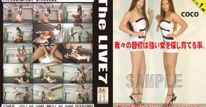 The LIVE 7 CLUB-Q TL-007