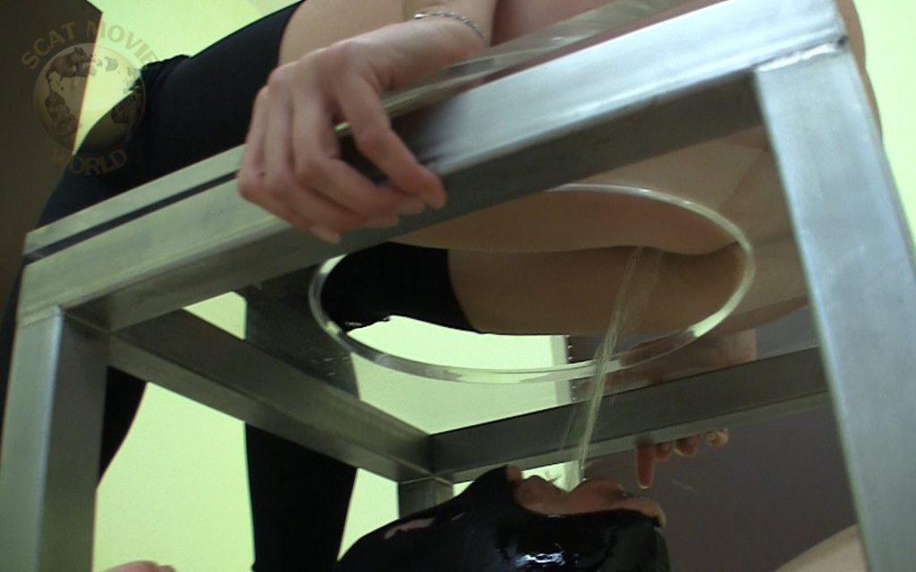 便器椅子の中で女性様の糞尿を待つM男2