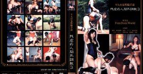 9人の女性騎手達 残虐の人間馬調教3  KFF-17