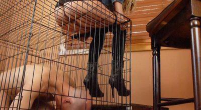 檻の中で泥まみれの靴舐め、更に檻の上から出された小便を飲むM男