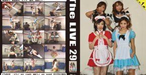 The LIVE 29 CLUB-Q TL-029