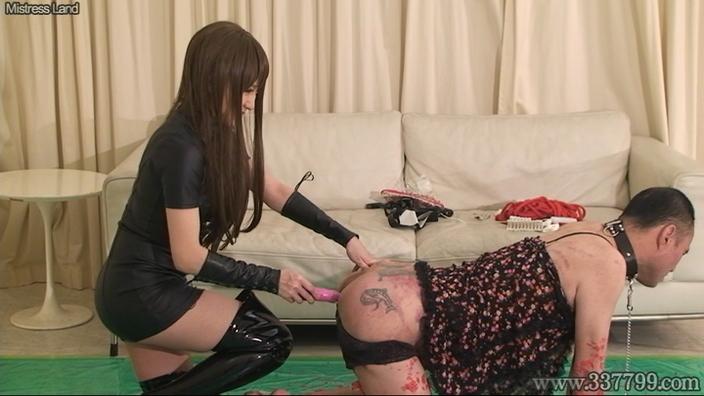 妻の性奴隷へと落ちていく夫 LUM
