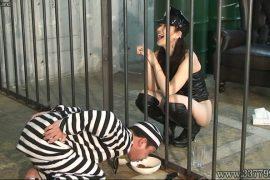 先行配信動画:空腹と射精管理で女看守に支配されていく囚人3