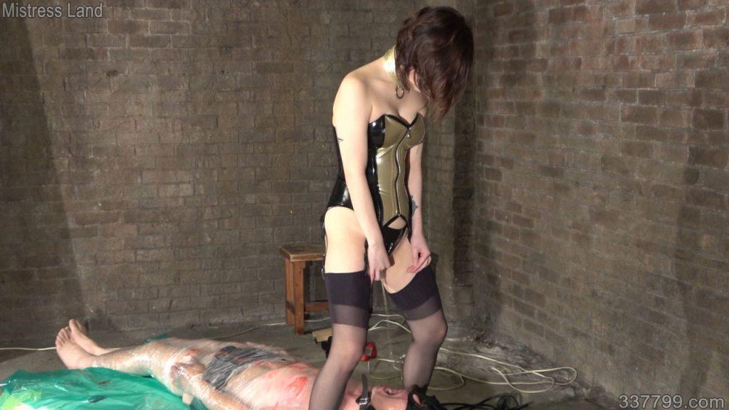 再訓練地下牢獄の美しき教官 3 画像 02