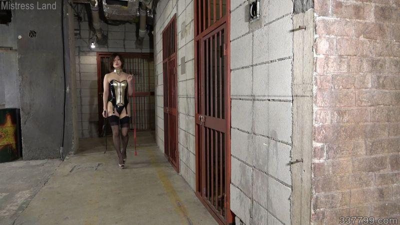 再訓練地下牢獄の美しき教官 SHERRY
