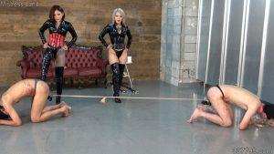訓練した自分の奴隷を戦わせて楽しむ女王達 4